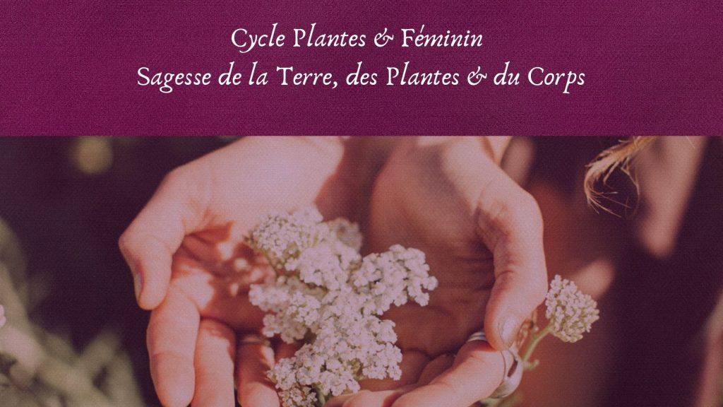 cycle plantes & féminin